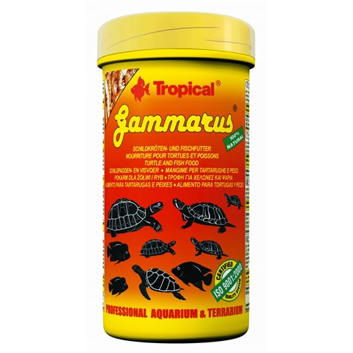 10325_GAMMARUS__500_ML1_593.jpg